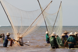 A group of fishermen catching fish by the seaside