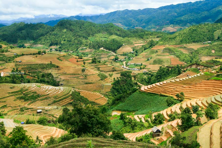 Photography tour capturing panorama of rice terraces